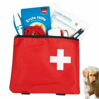 1.Hilfe Tasche Hund / Katze